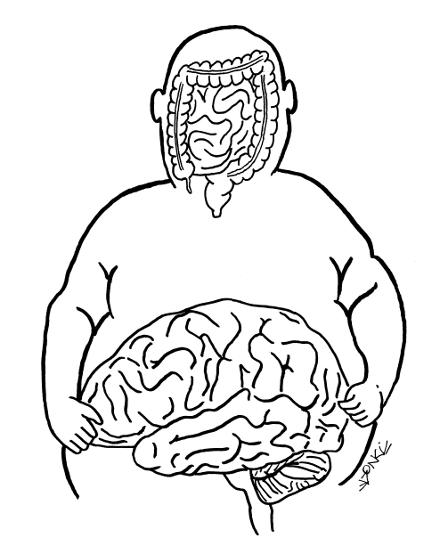 cerveauprimitif440